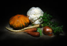 Set of organic vegetables Stock Photography