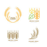 Set of organic wheat grain outline icons. Royalty Free Stock Photography