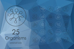 Set of organisms icons Royalty Free Stock Photo
