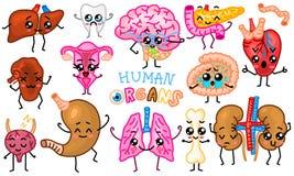 Set organy Śliczna szczęśliwa istota ludzka, uśmiechnięci charaktery Wektorowe szpilki, kreskówki kawaii ikony Zdrowy serce, jeli ilustracji