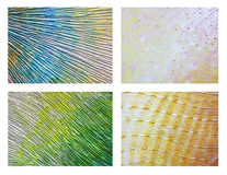 Set of original acrylic abstract painting Royalty Free Stock Photography