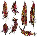 Set ornamentacyjny piórko, plemienny projekt Atramentu ręka rysujący illustr Zdjęcia Stock