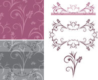 Set of ornamental backgrounds and elements. Illustration Royalty Free Stock Photography