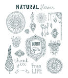 Set of ornamental Boho style.  Flowers, feathers, leaves. Bird feathers. Vintage Royalty Free Stock Image
