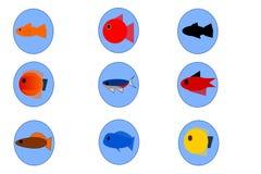Set of Ornamental Fish - Toy Fish vector illustration