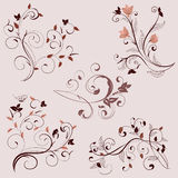 Set of ornaments Royalty Free Stock Photography