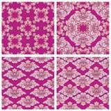 Set ornamenty, bezszwowi kwieciści wzory z tropikalnymi kwiatami Zdjęcia Stock