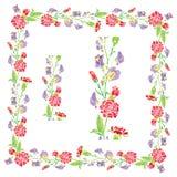 Set ornamenty - dekoracyjna ręka rysująca kwiecista rama i granica Fotografia Royalty Free