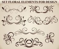 Set of ornate floral element Stock Photography