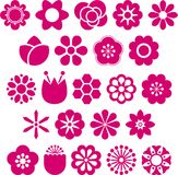 Hot pink flowers Royalty Free Stock Images