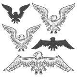 Set orzeł dla emblemata, projekta tatuaż, etykietki i logo, Zdjęcia Stock