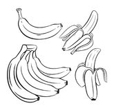 Set of outline Bananas. Stock Photos