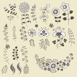 Set of outline flowers elemments.Flowers,branches,berries Royalty Free Stock Image