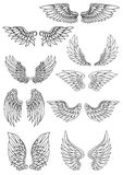 Set of outline heraldic wings Stock Images