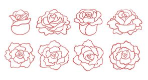 Set of outline roses blooms isolated. On white background. Top and side view. Vector hand drawn illustration vector illustration