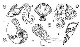 Set of outline seashells, fish and jellyfish. Decorated boho pattern. Vector element for your creativity Stock Photo