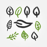 Set of outlines of abstract leaves. Icons drawn with brush. Stock Photos