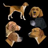 Set łowieccy psy royalty ilustracja