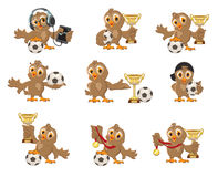 Set owl bird soccer. Win in football championship. Sports Cup and medal Royalty Free Stock Photo