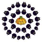 Set Owl and pumpkin. Emotions. Happy Halloween Stock Image