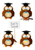 Set of owl students Stock Images