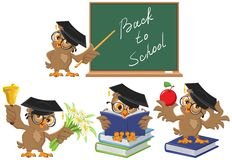 Set Owl Teacher. Back To School Royalty Free Stock Image