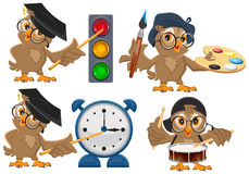 Set owl teacher Royalty Free Stock Images