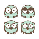 Set owl Stock Images