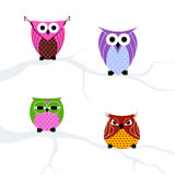 Set of owls Royalty Free Stock Photography