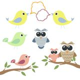Set of owls and birds with speech bubbles Stock Images