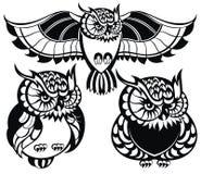 Set of owls Royalty Free Stock Photo