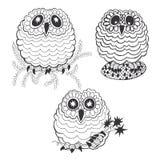 Set of owls. Set of cartoon owls isolated on white background Royalty Free Stock Photo