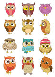 Set of owls Stock Photography