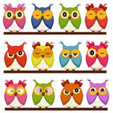 Set of 12 owls Stock Images