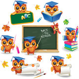 Set of  owls in graduation caps Stock Image