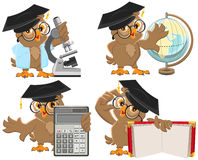 Set owls teachers Royalty Free Stock Photography