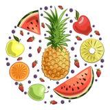 Set owoc i jagody: ananas, arbuzów plasterki, jabłka, pomarańczowy plasterek, truskawki i czarne jagody, Lato royalty ilustracja