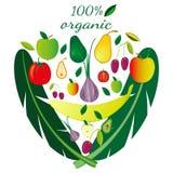 Set owoc i warzywo, artistically kłaść out w formie twarz Set na Biały Tle royalty ilustracja
