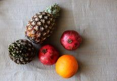 Set owoc na szarym płótnie Obrazy Royalty Free