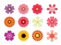 Set płaskie ikona kwiatu ikony w sylwetce odizolowywającej na bielu dla majcherów, etykietki, etykietki, prezenta opakunkowy papi fotografia royalty free