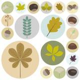 Set płaskiego projekta elementów naturalne ikony 01 ilustracja wektor