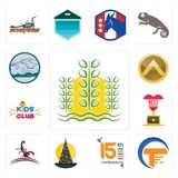 Set of paddy, traders, 15th anniversary, wizard hat, scorpion, best kids club, spartan shield, offroad icons. Set Of 13 simple editable icons such as paddy Royalty Free Stock Image