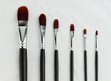Set of paint brushes. Paint brushes lying on a white canvas Royalty Free Stock Photography