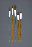 Set of paint brushes Royalty Free Stock Photos