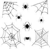 Set pająki Obrazy Stock