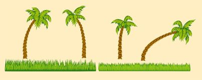 Set of palm trees and grass Stock Images