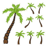 Set of Palm trees Stock Photo