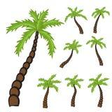 Set of Palm trees Stock Photo