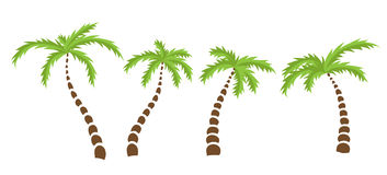 Set of Palm trees Stock Images
