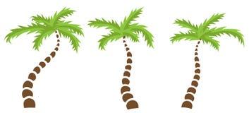 Set of Palm trees Royalty Free Stock Photos